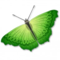 Naklejka Drukowana zielony motyl