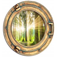 Okno - las, widok, słońce