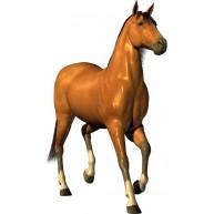 Naklejka Drukowana koń kasztanek 03