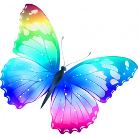 Naklejka Drukowana tęczowy  motyl