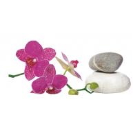 Naklejka Drukowana    storczyki na kamieniach