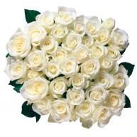 Naklejka Drukowana   bukiet białych róż