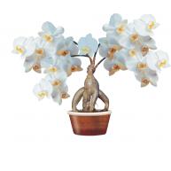 Naklejka Drukowana   drzewko białych storczyków