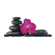 Naklejka Drukowana   różowy storczyk na czarnych kamieniach