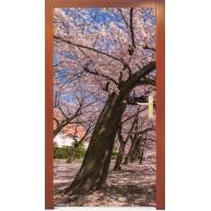 Naklejka na drzwi - kwitnące drzewo