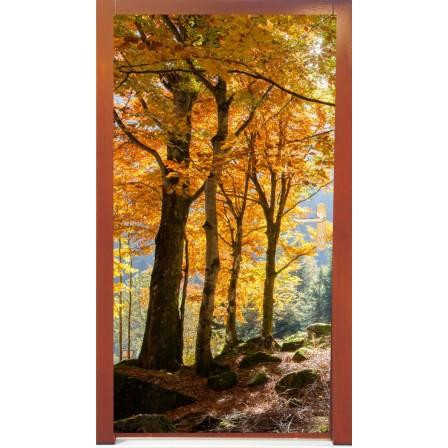 Naklejka na drzwi - jesienne drzewa