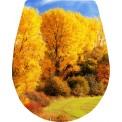Naklejka Deska sedesowa - drzewo, las, jesień