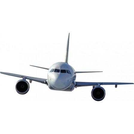 Naklejka Drukowana szybki samolot