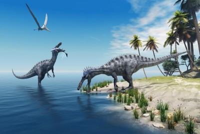 Dinozaury palmy morze ocean natura zwierzęta