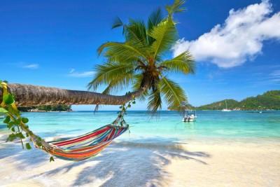 Morze ocean plaża palma hamak natura krajobraz widoki