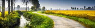 Kręta wiejska droga z rzeką i zbożem