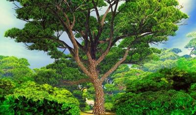 Duże zielone drzewo wśród małych, błękitne niebo