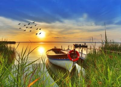 Jezioro z łodziami, ptaki zachód słońca