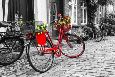 Czerwony rower rowery budynki kwiaty ulica szarości