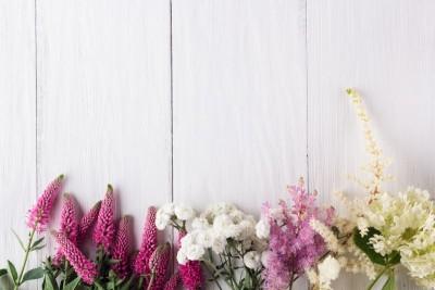 Różne kwiaty