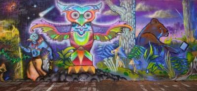 Graffiti sowa
