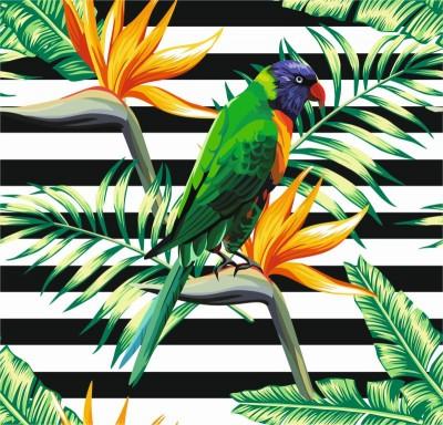 Kolorowa papuga rośliny kwiaty natura zwierzęta