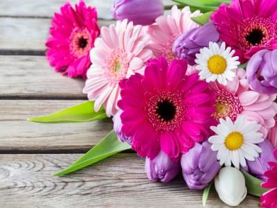 kwiatki , różowe