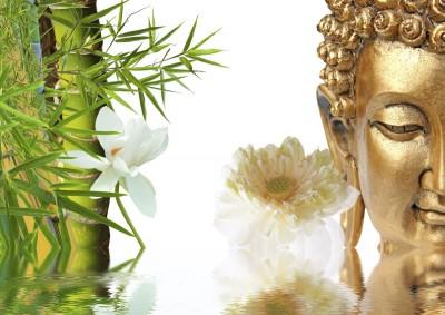 bambus, twarz, woda