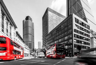 Czarno-białe miasto autobus bus budynki