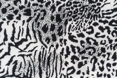 pantera, czarno-białe