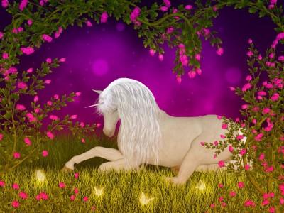 koń, pegaz, las