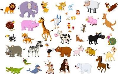 Wszystkie Zwierzęta Zoo Safari Wf353 Do Pokoju Dziecka