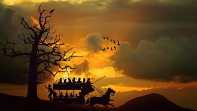 bryczka, konie, zachód słońca
