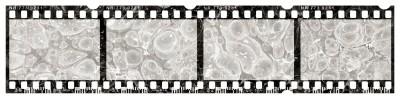 Taśma z filmu
