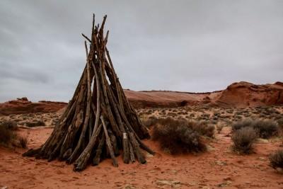 pustynia, drewno
