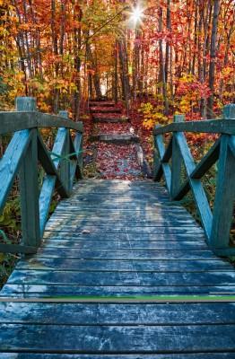 most, jesień