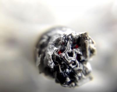 papieros, popiół