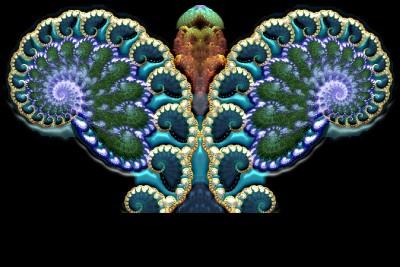 abstrakcja, motyl