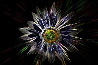 kwiatek ,abstrakcja