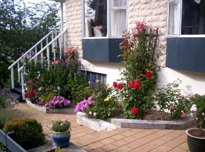 ogród ,kwiaty , dom