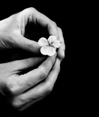 dłonie, kwiatek